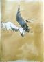 vogel ausgestorben (n. ydol)