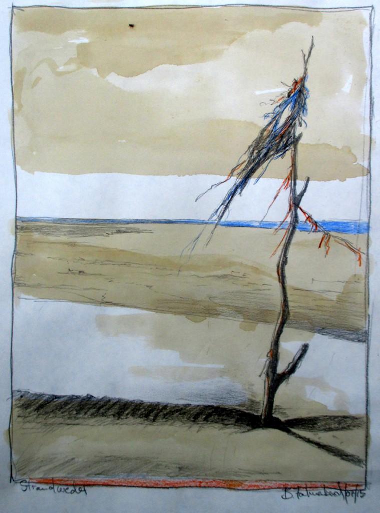 strandwedel
